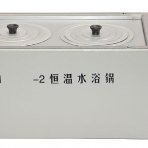 Constant temperature water pot